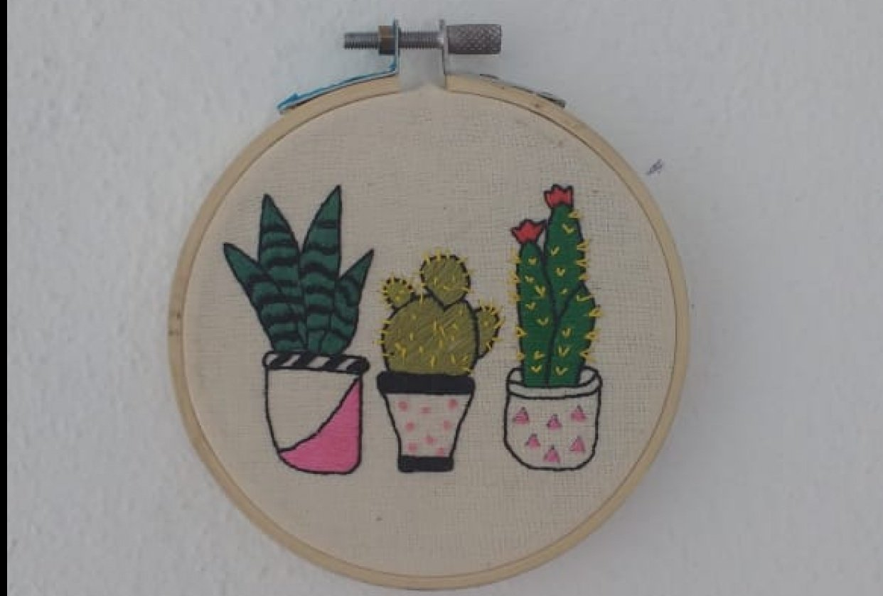 My cacti project :) - student project