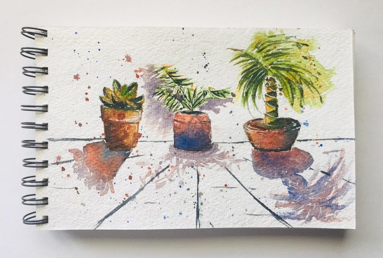 Terracotta Pots - student project