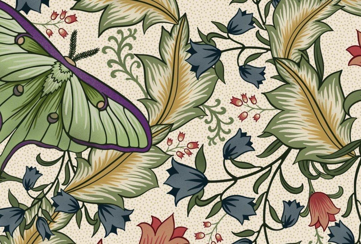 Luna Moth - student project
