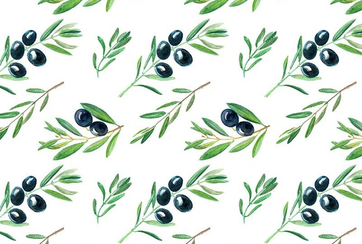 Olive Branches - student project
