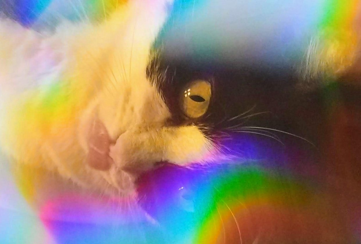 Rainbow Clara - student project