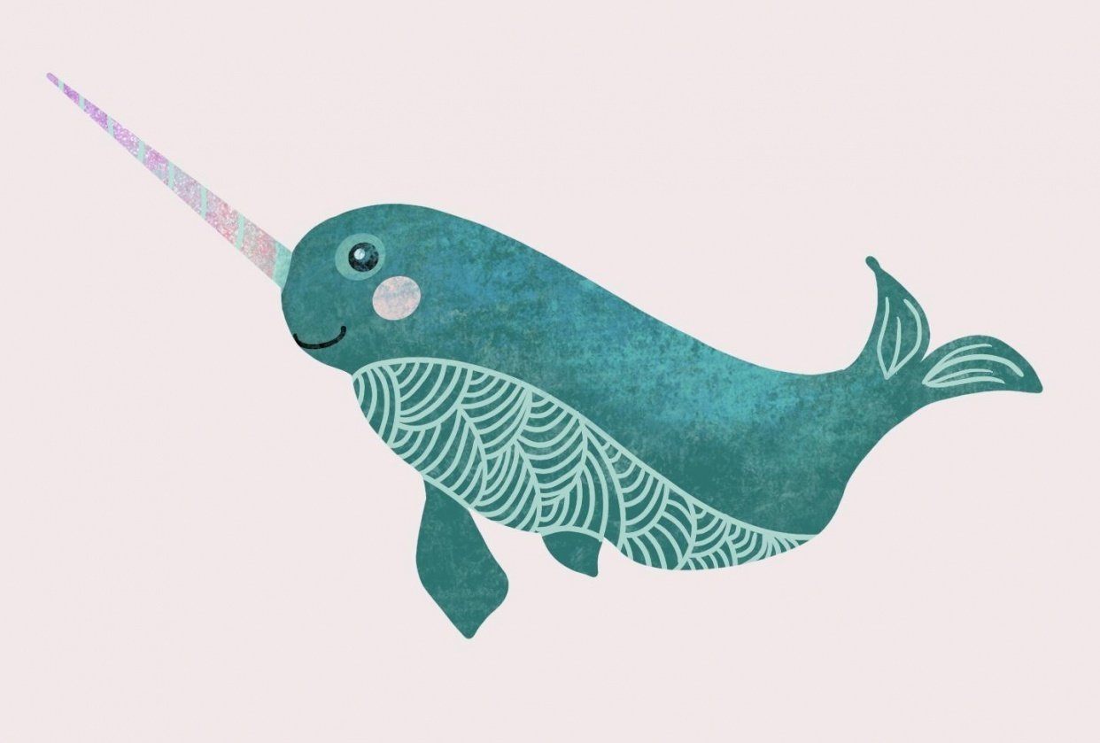 Narwhal - student project