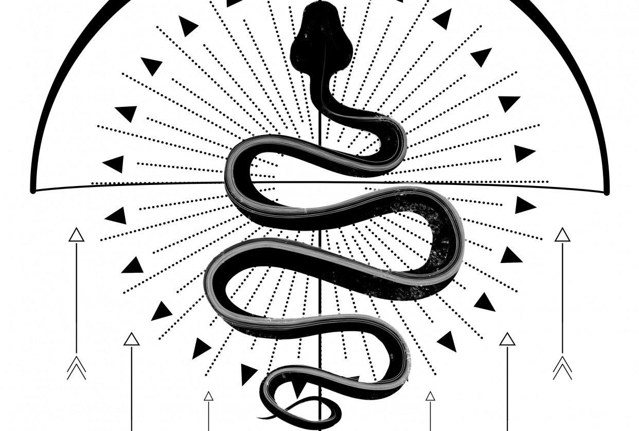 Sakey snake and dirty bastars - student project