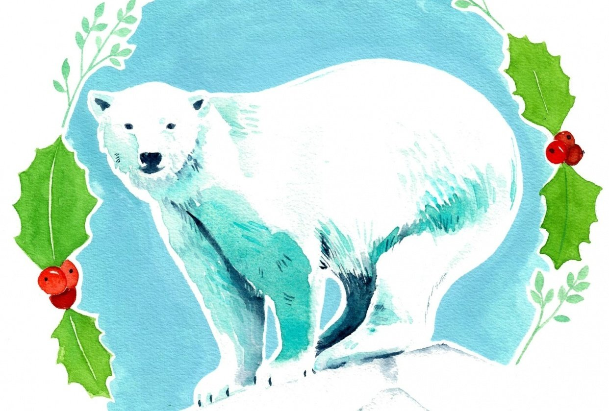 Seasonal Animal Portraits - student project