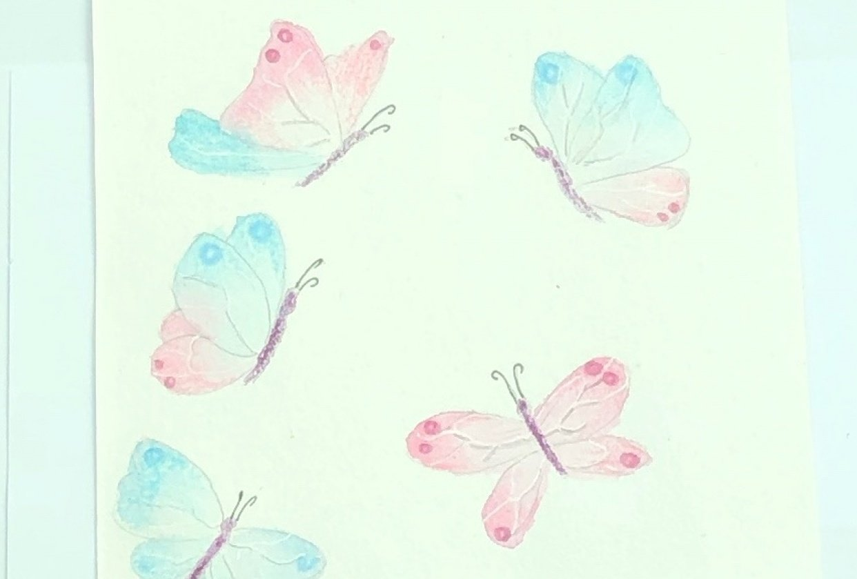 Butterflies in watercolor and coloured pencil - student project