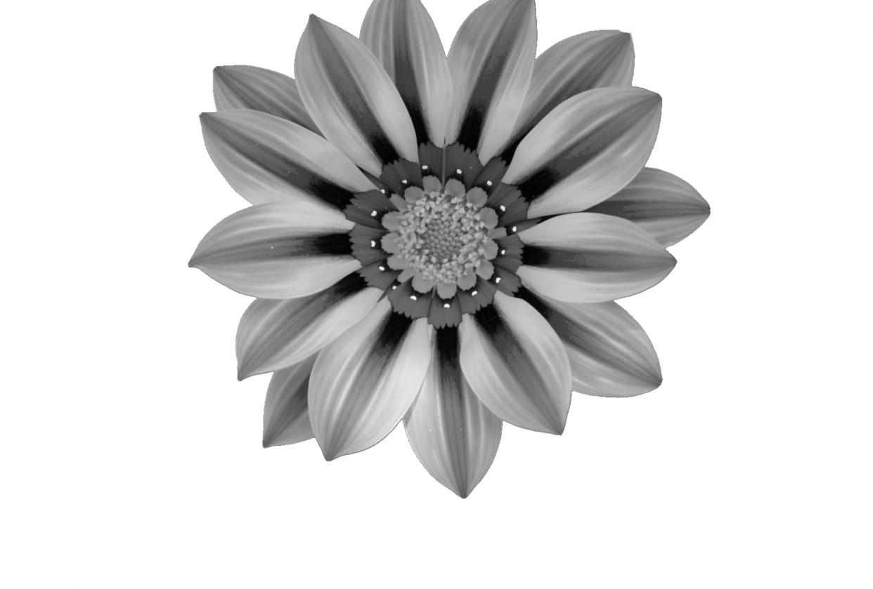 My flower - student project