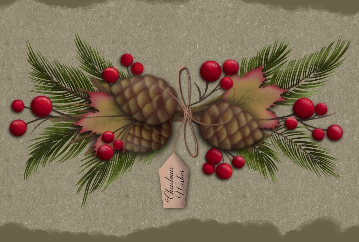 Pine cones - student project
