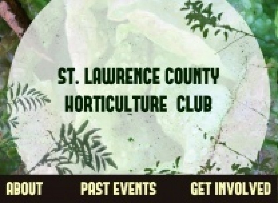 Horticulture Club - student project