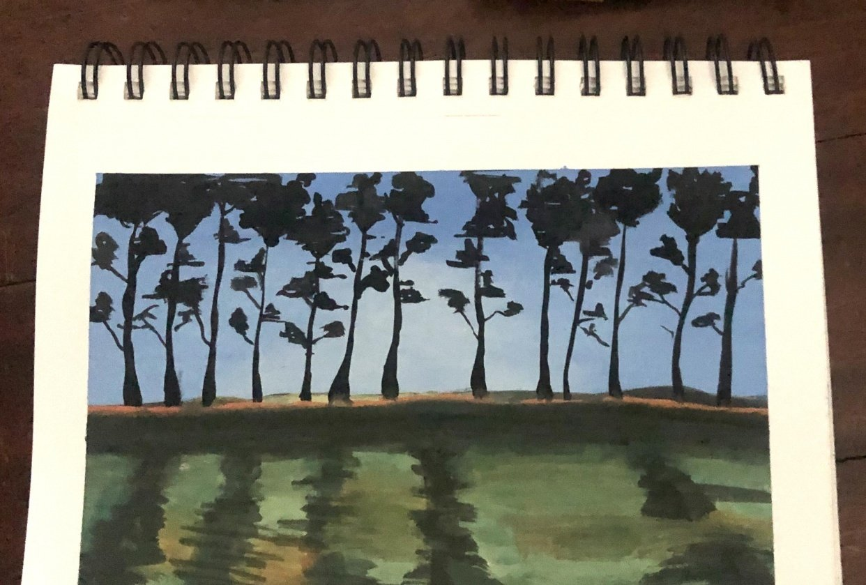A tree line - student project