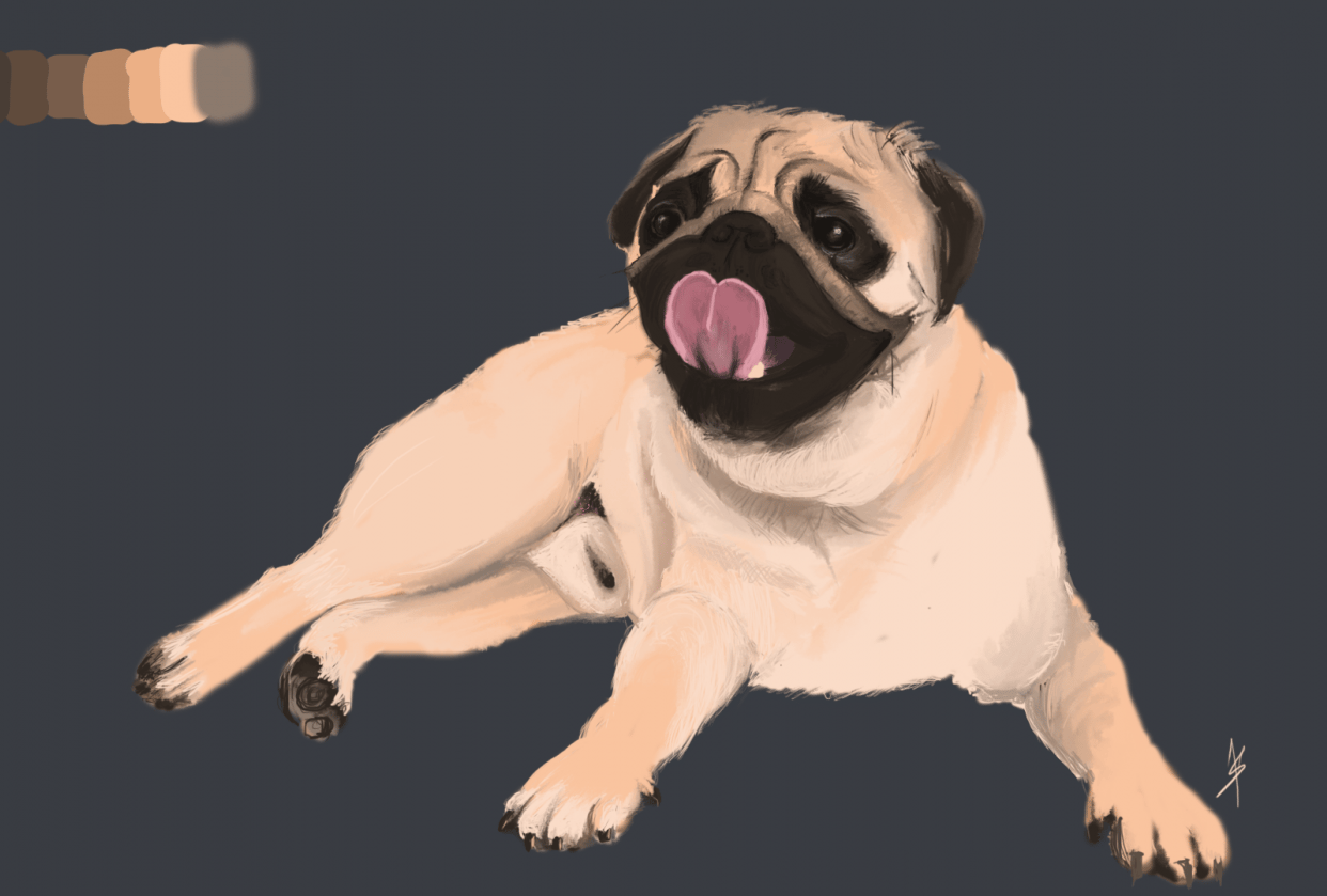 The Pug - student project