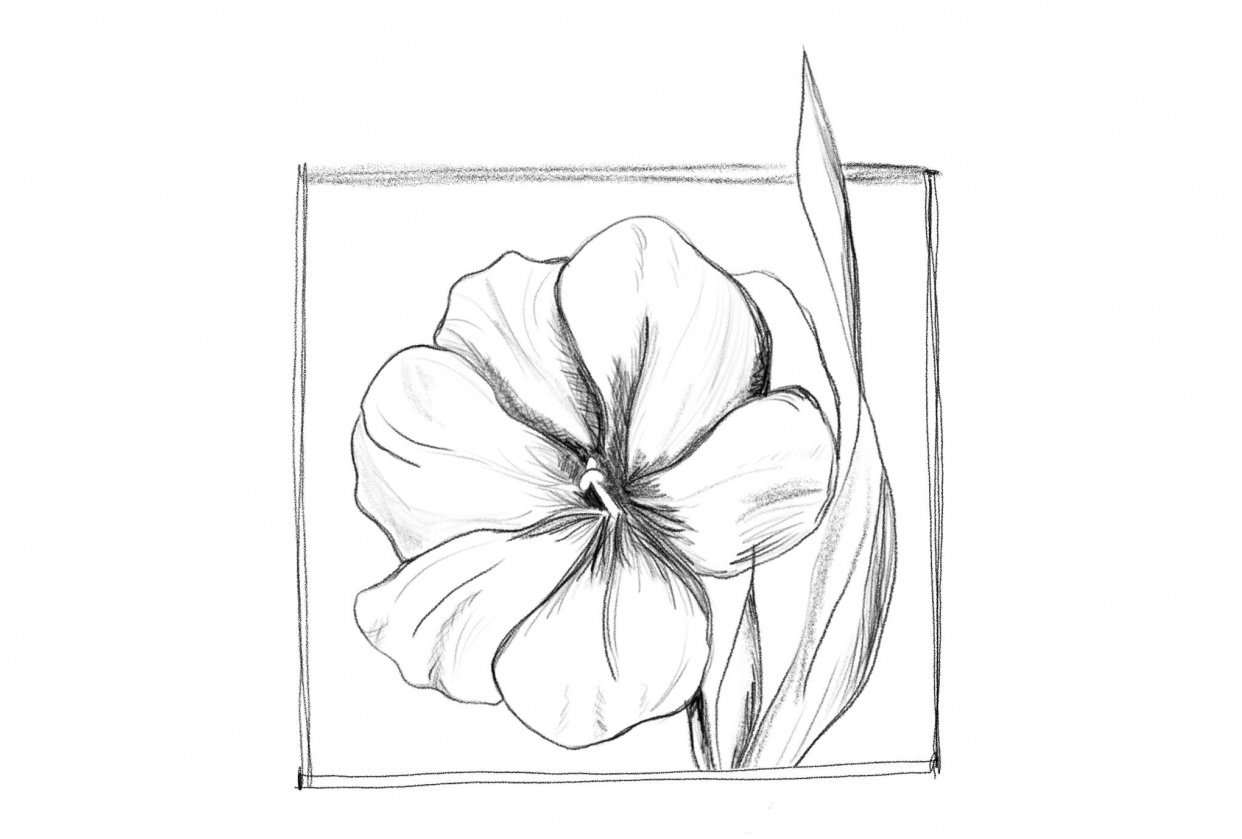 Flower Rough Sketch - student project