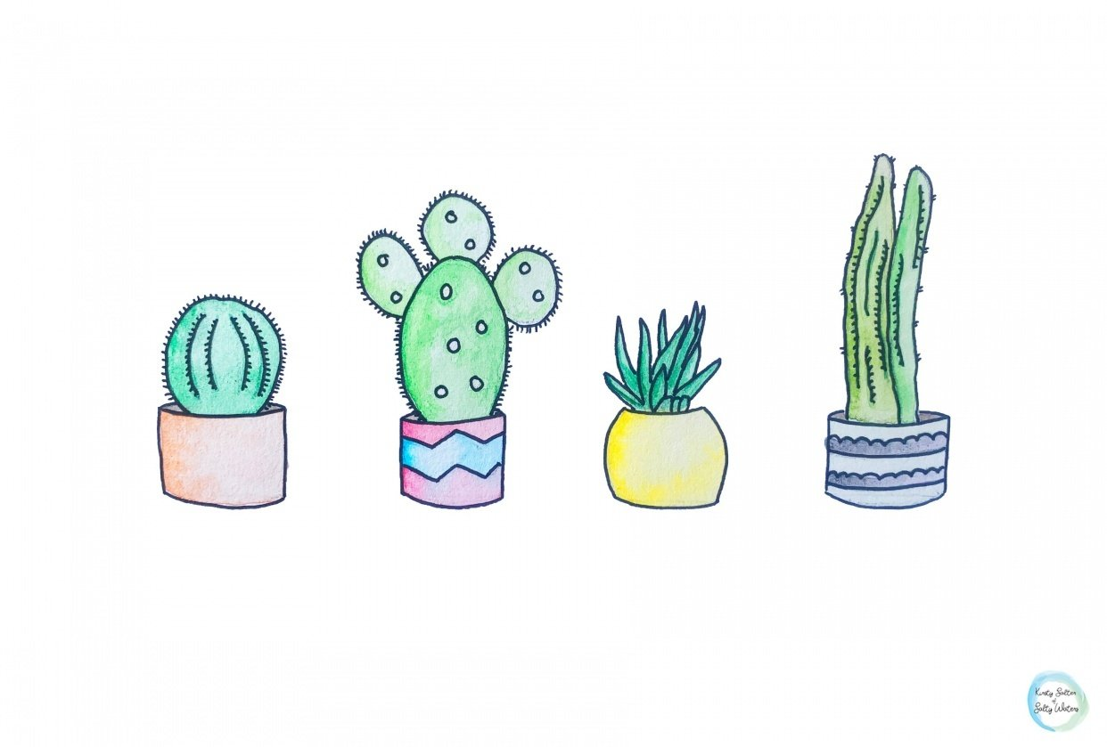 Family of Cactus's - student project