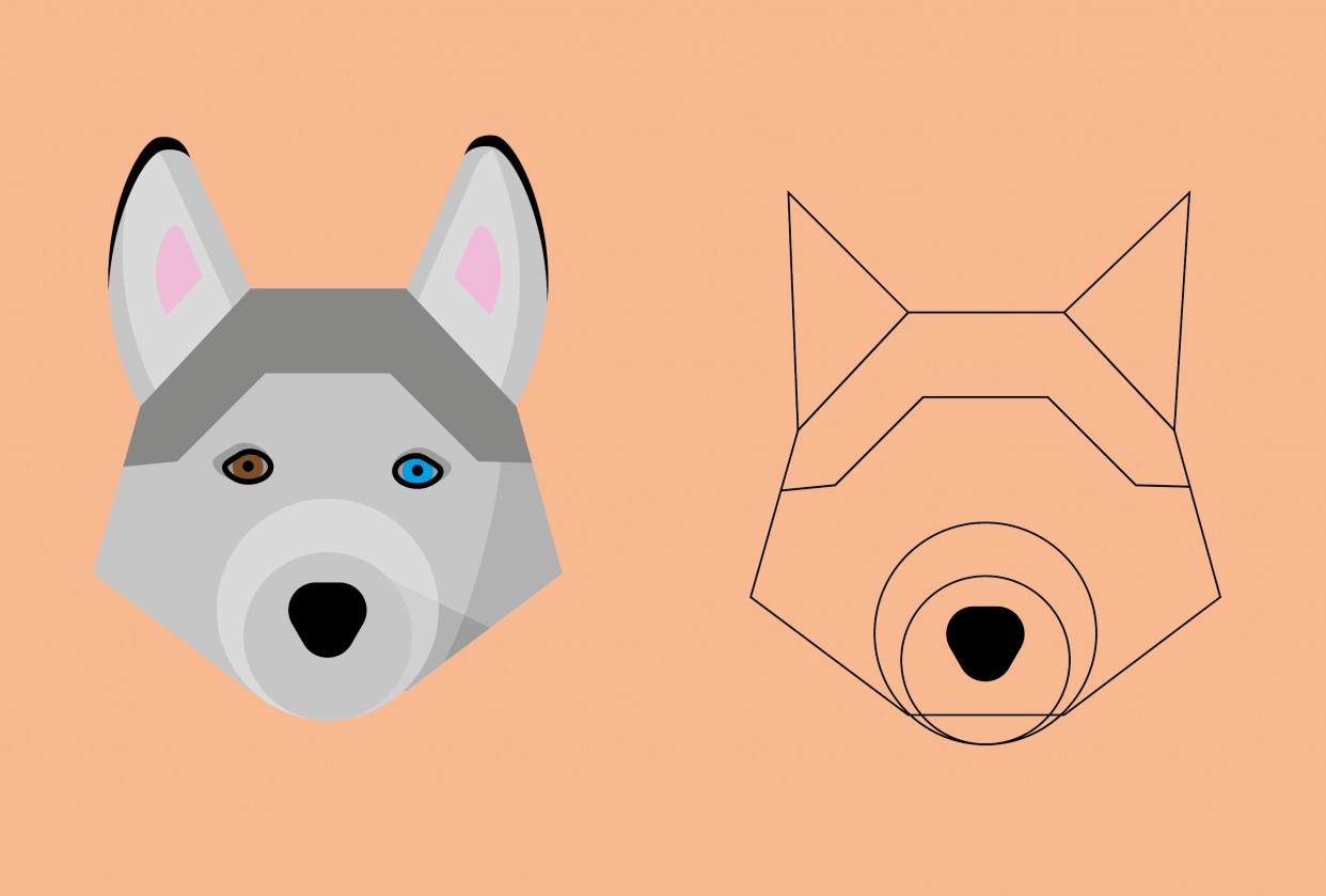 Dog - student project