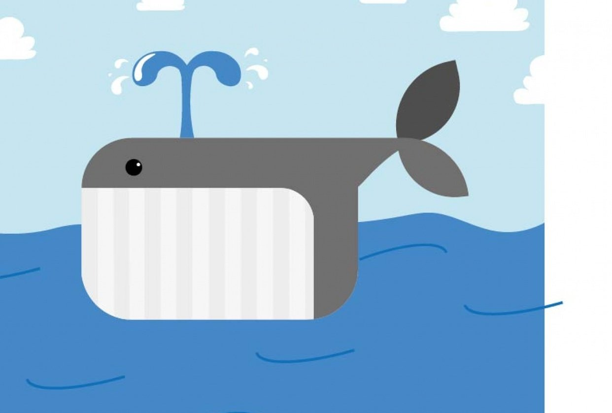 Whale_Illustrator - student project