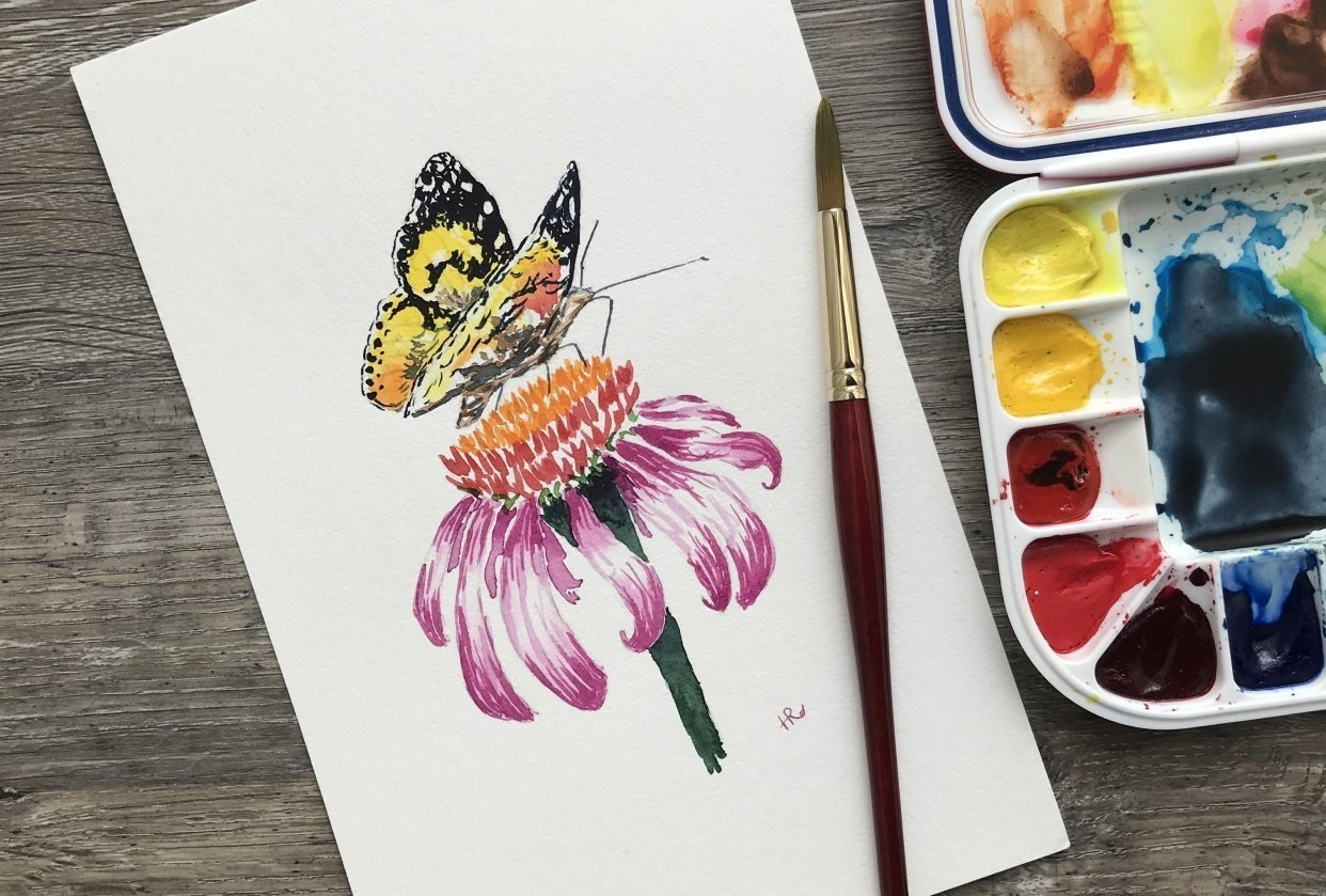 Painted Lady in the Garden - student project