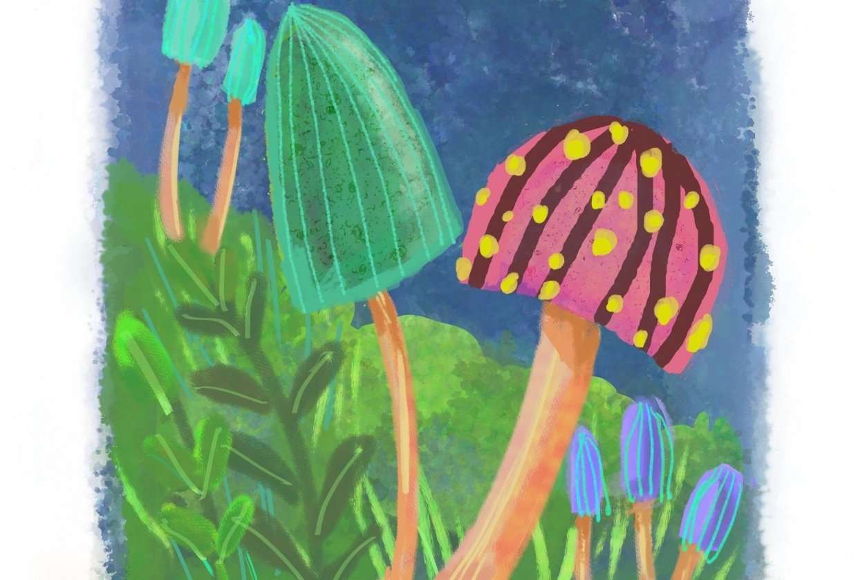 Mushrooms - 3 different ways (watercolor, pixel, vector) - student project