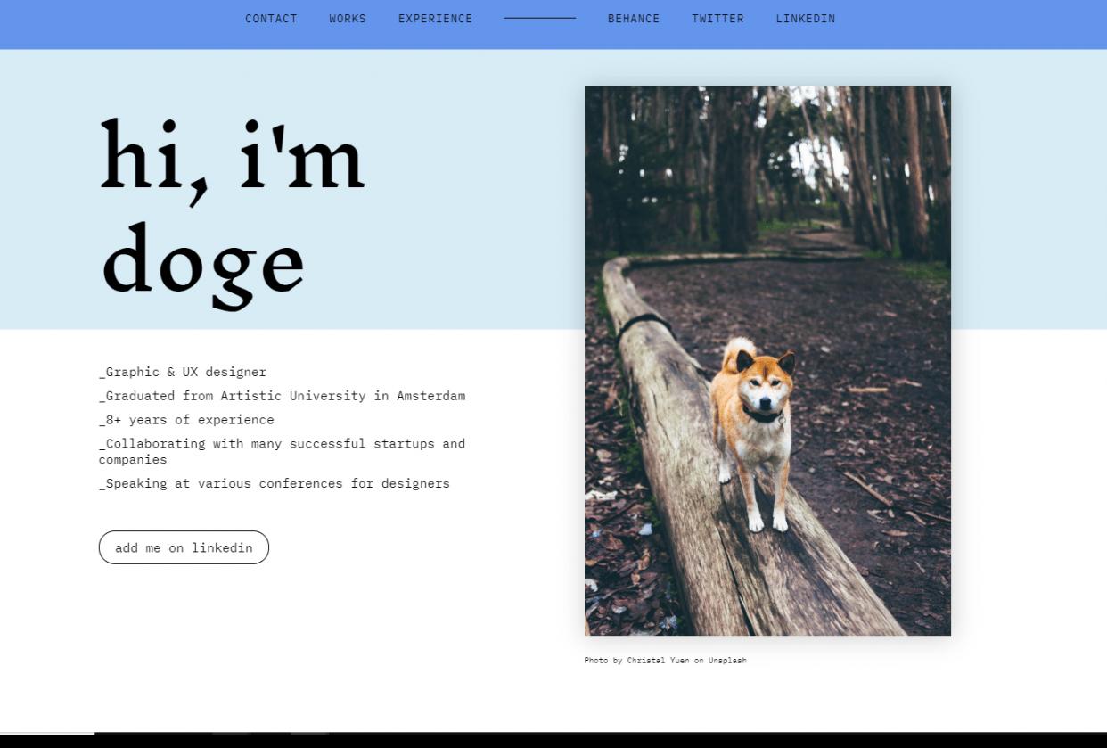 Doge portfolio example site - student project