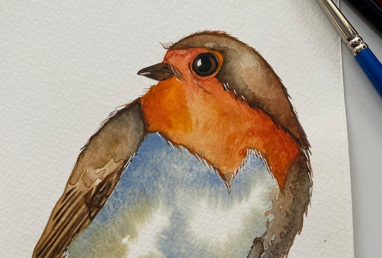 Robin - student project