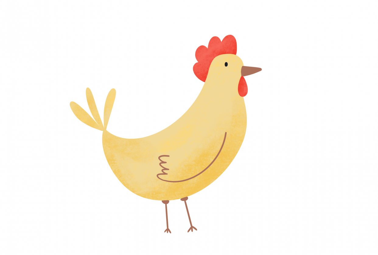My chicken and squirrel :) - student project