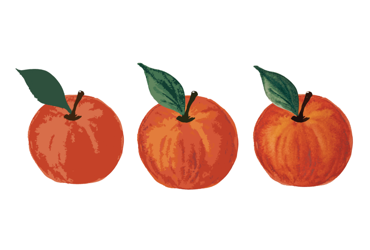 Painted Apples - student project