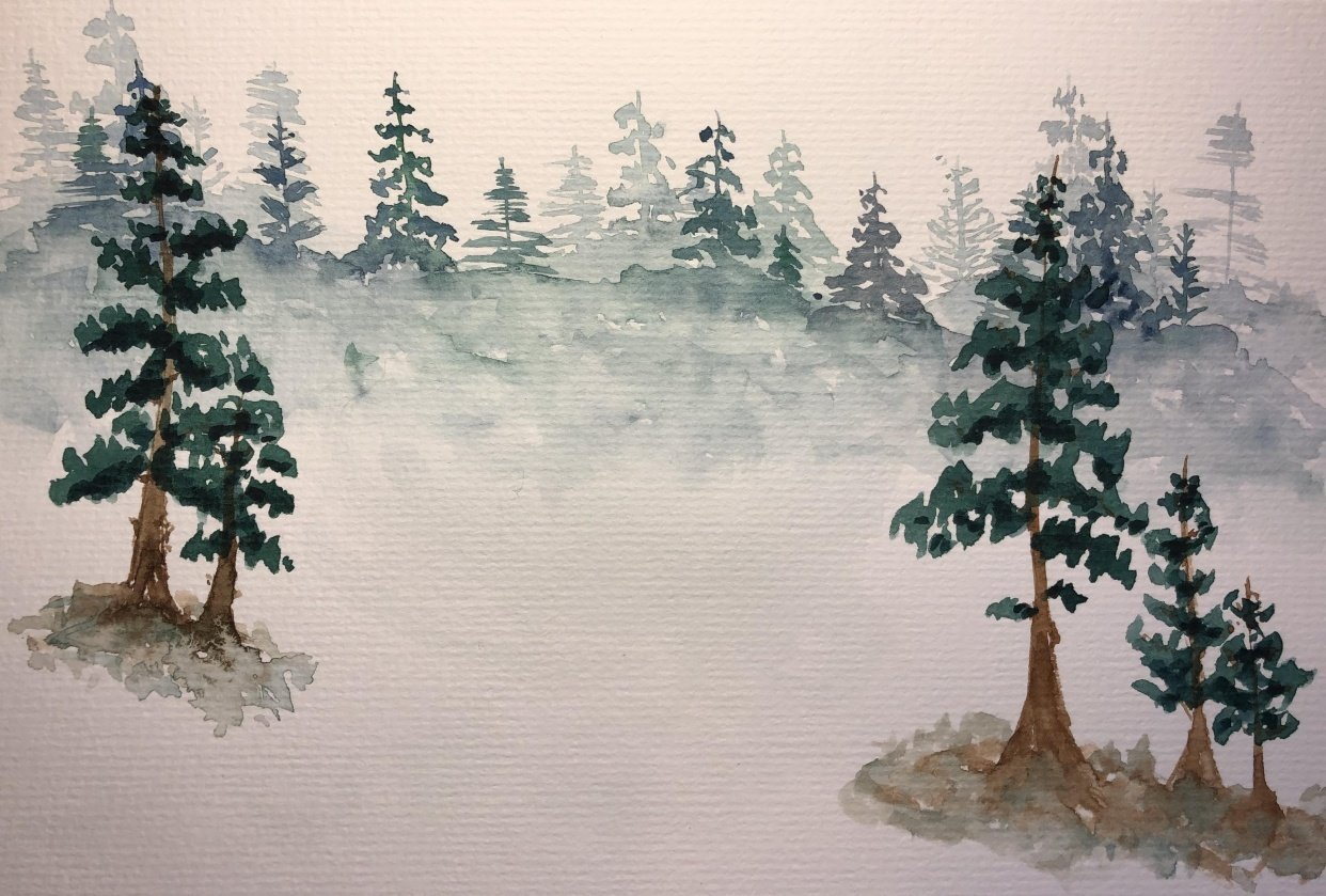 All the trees - student project