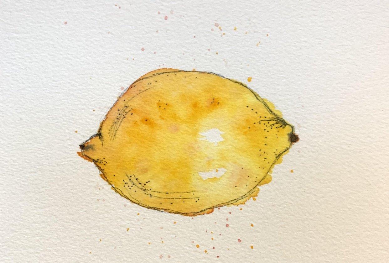 Lemon & More - student project