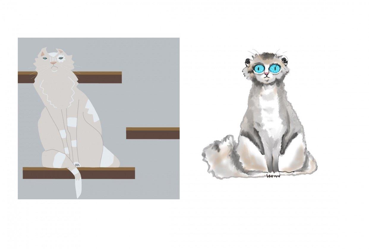 My cat Julio - student project