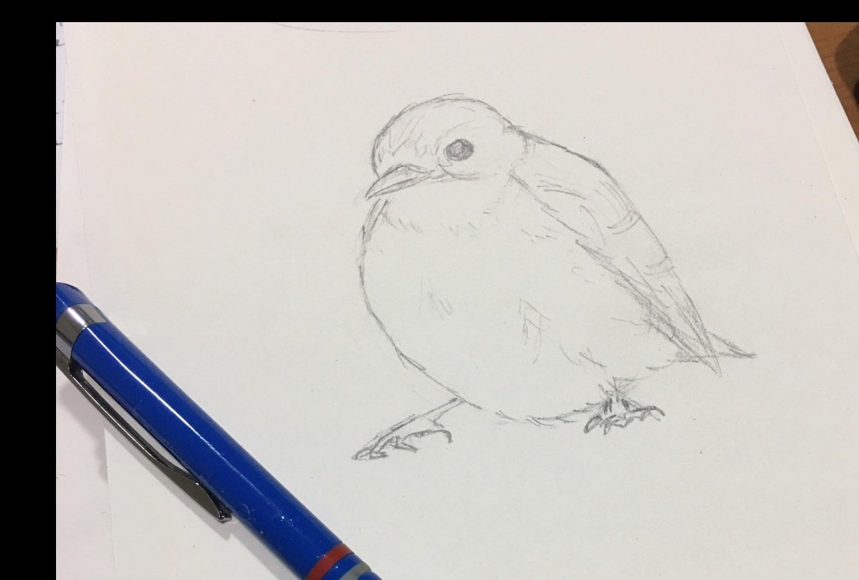 I can draw :) - student project