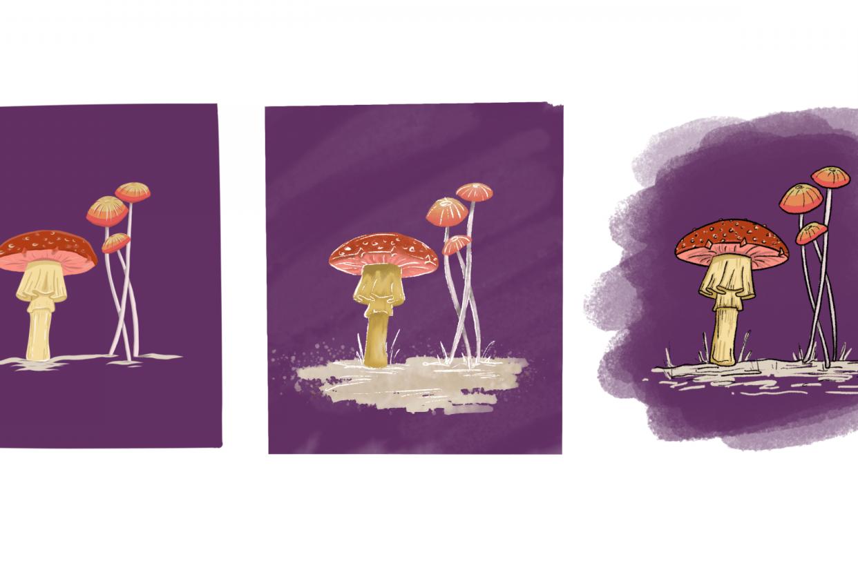 My Mushrooms - student project