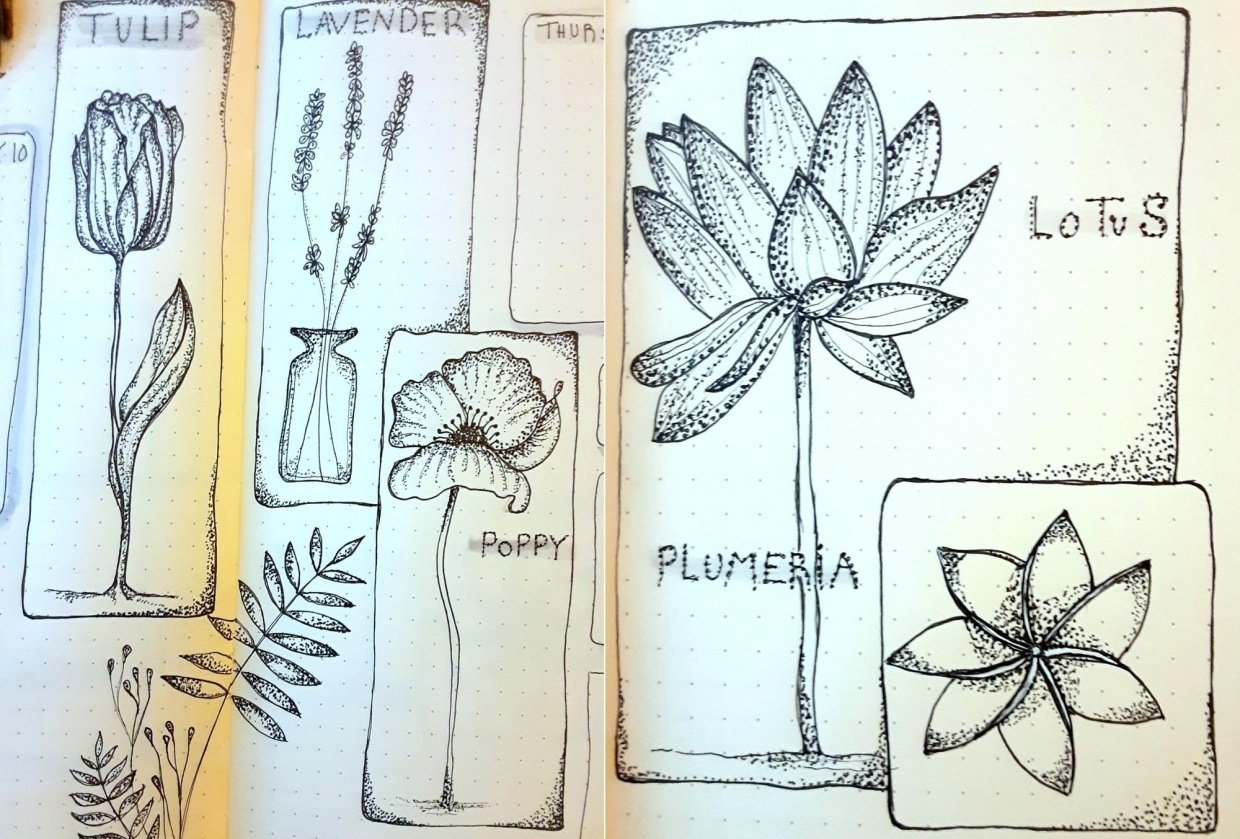 Dotwork Botanical Cards - student project