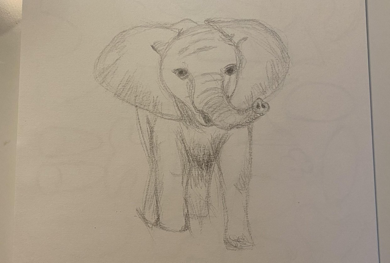 my first ever drawing since childhood - student project