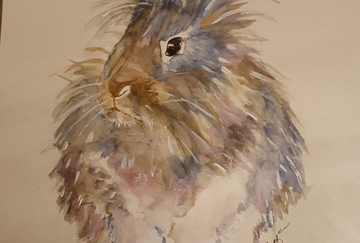 Fluffy the  Bunny - student project