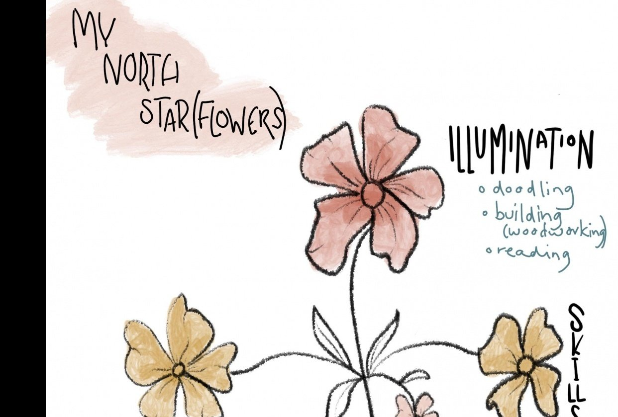 My North Star in Flowers - student project