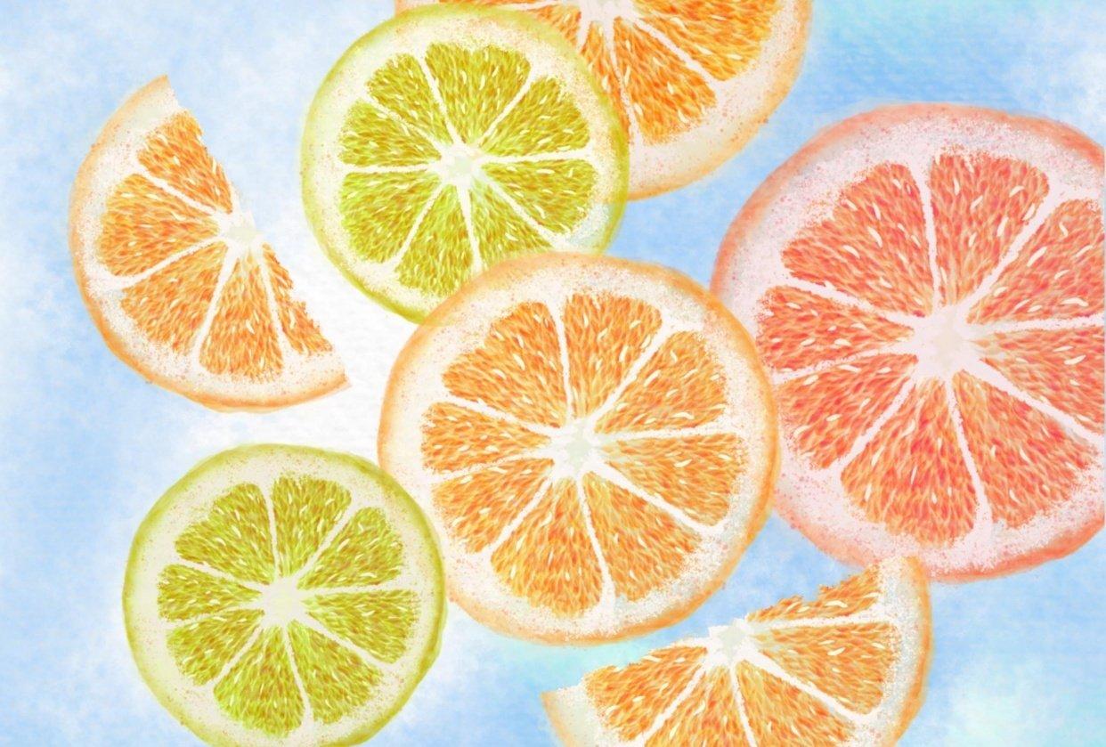 Watercolor citrus slices - student project