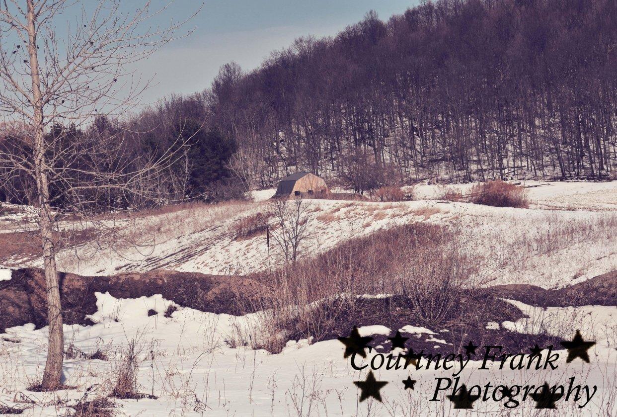 Winter Fun - student project