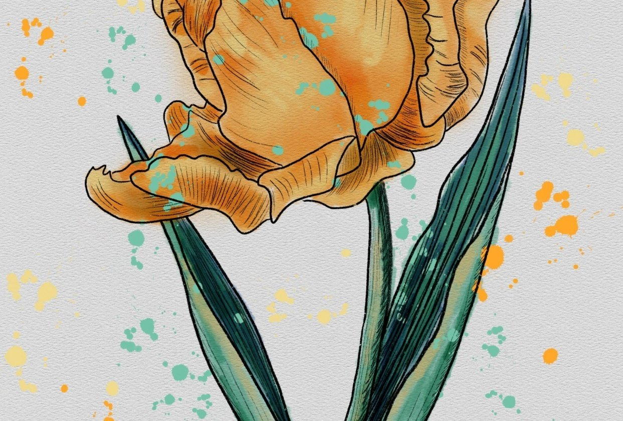 Parrot Tulip - student project