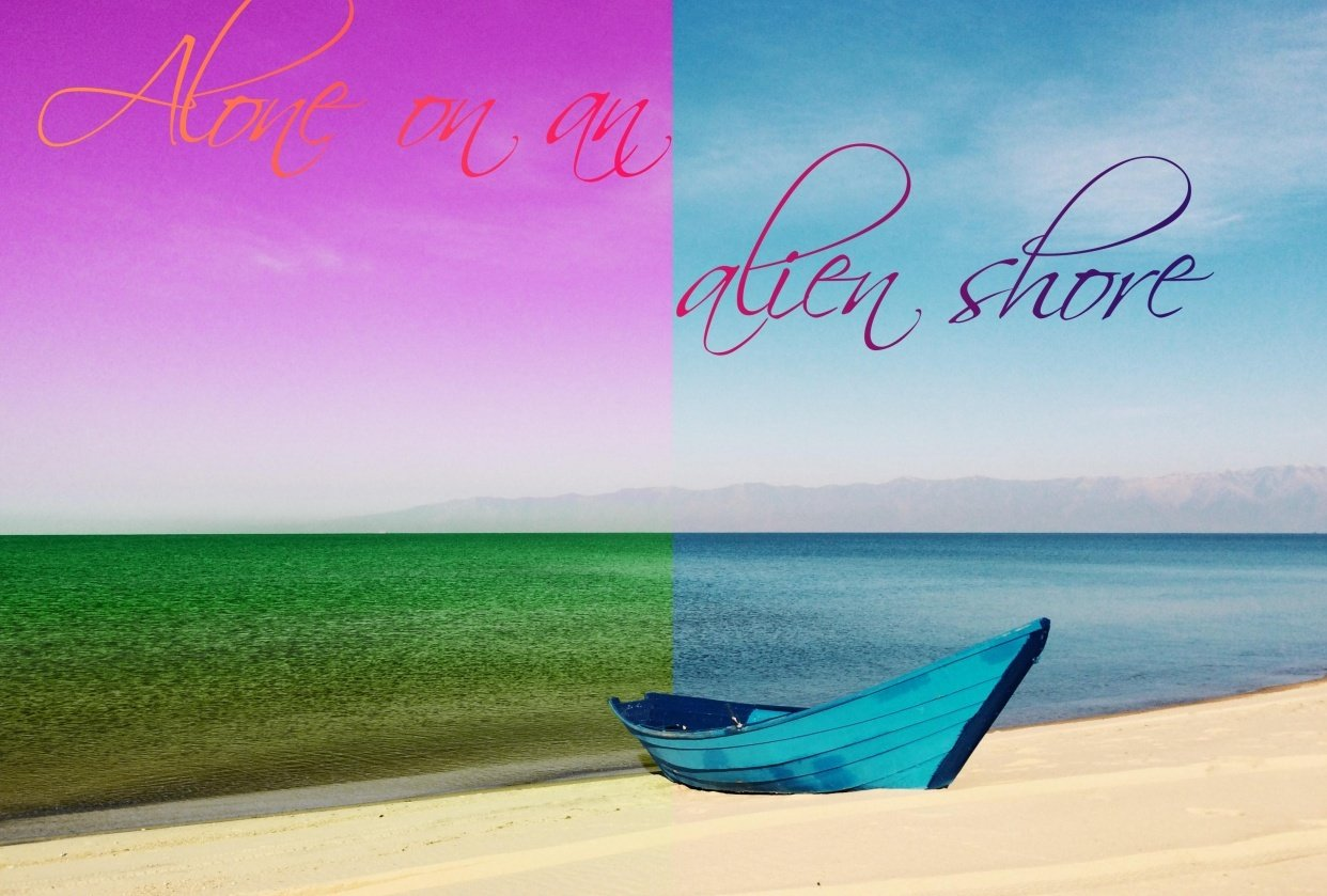 Alone on an alien shore - gradient project - student project