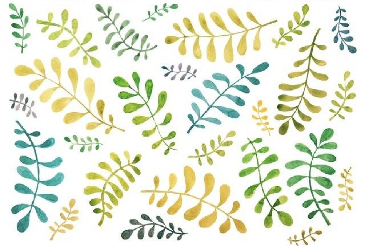 Blobby leaves - student project