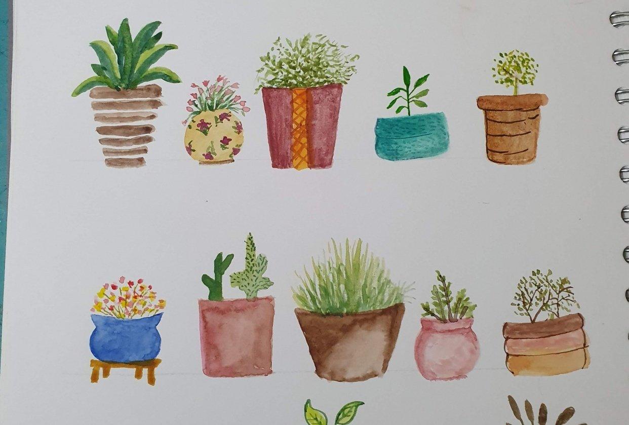 Pots - student project