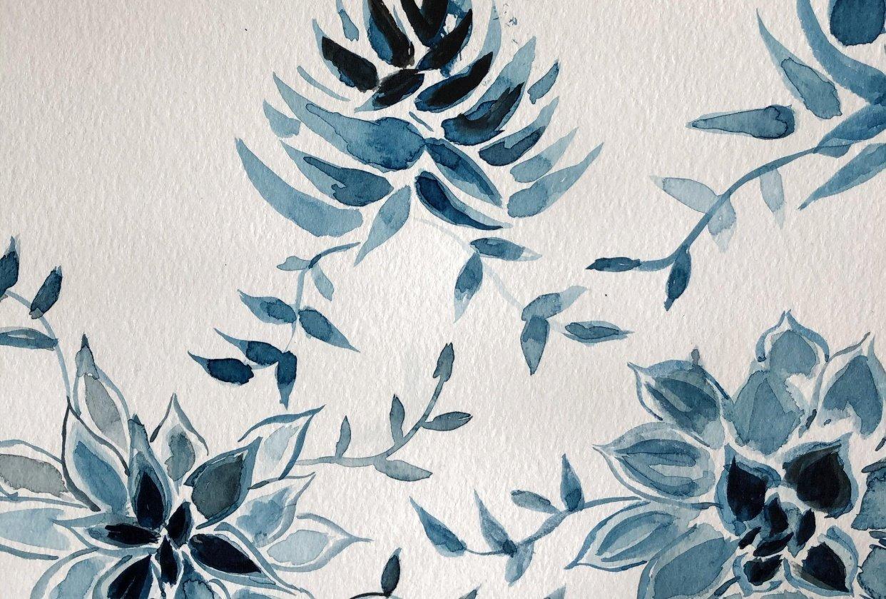 Monochrome succulents - student project