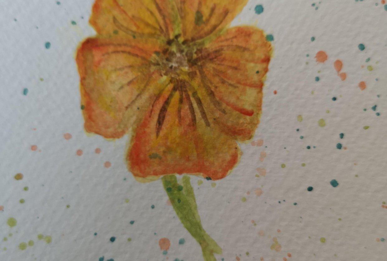 Rumena rožica - student project