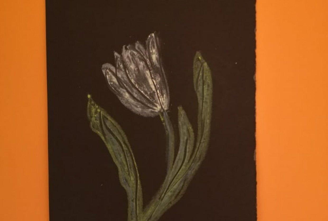 Tulipan oljni pasteli - student project
