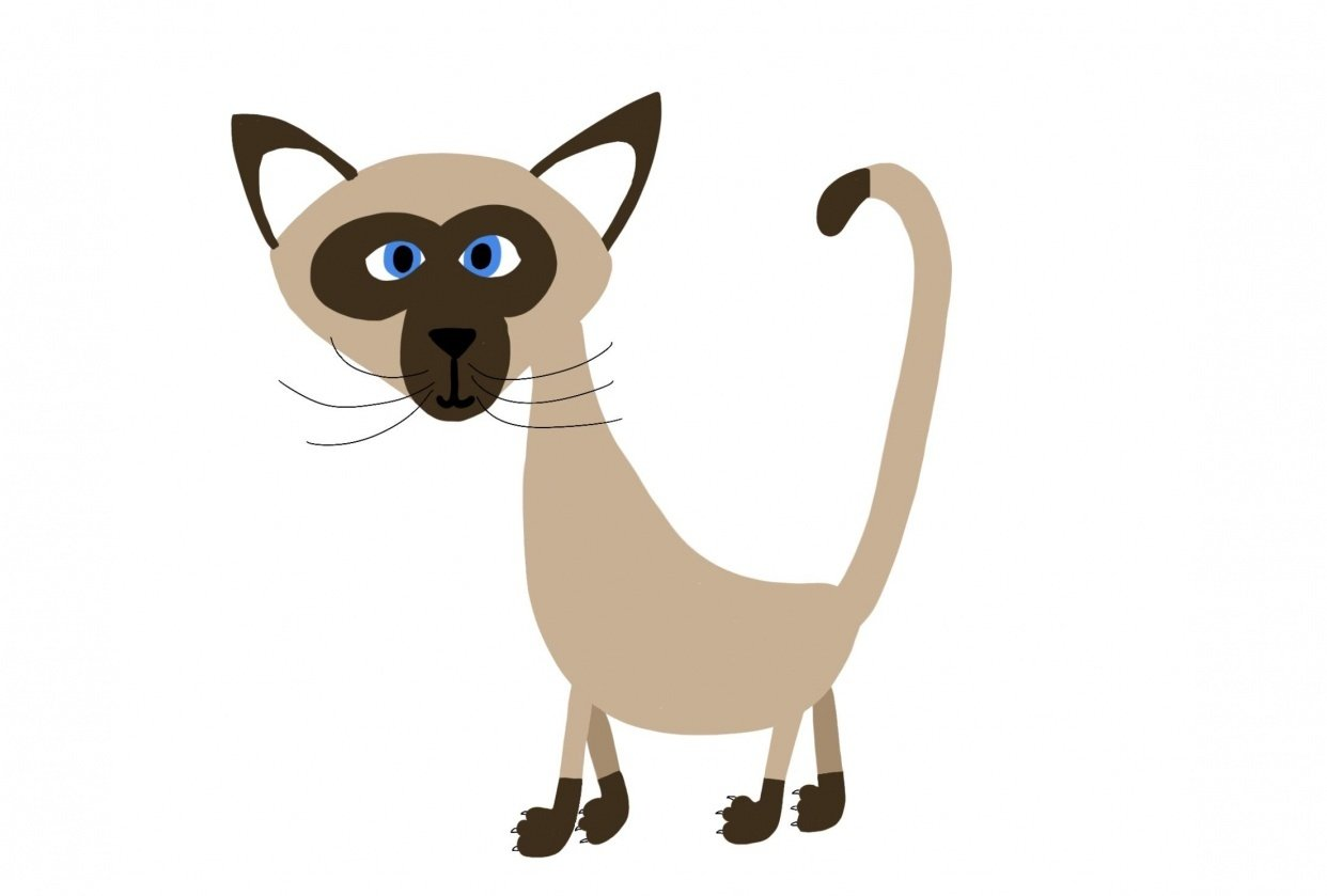 Siamese - student project
