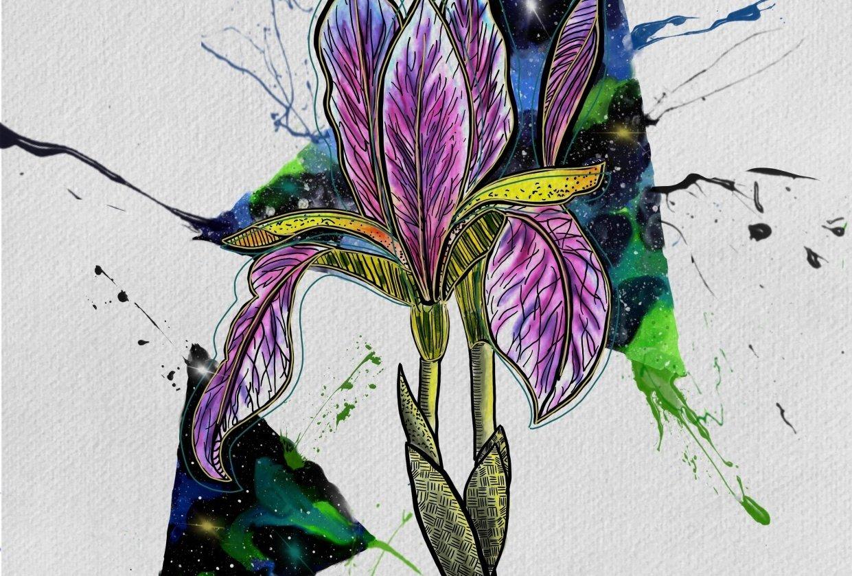 Watercolor Iris galaxy - on ipad - student project