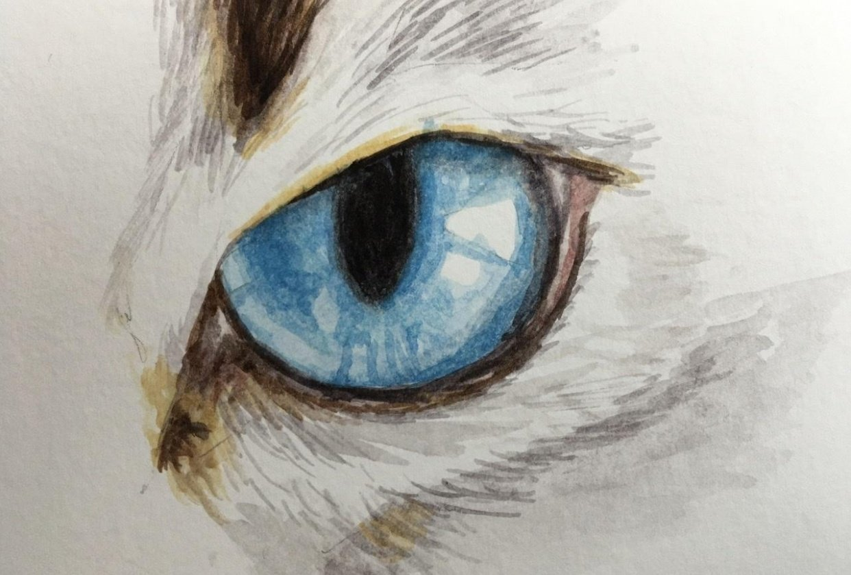 Drawing and painting animal eyes - student project