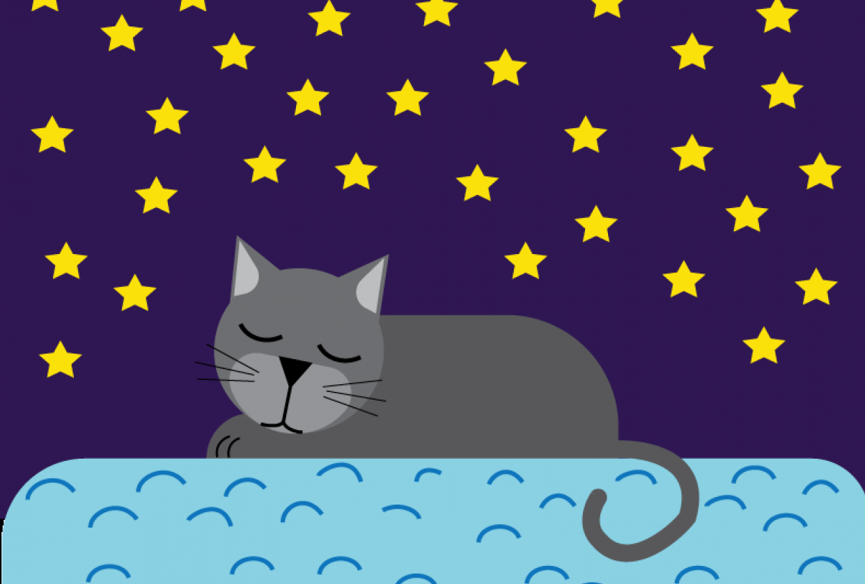 Sleeping Cat - student project