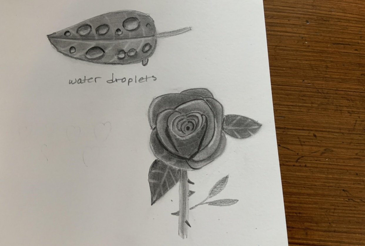 Leaf and rose - student project
