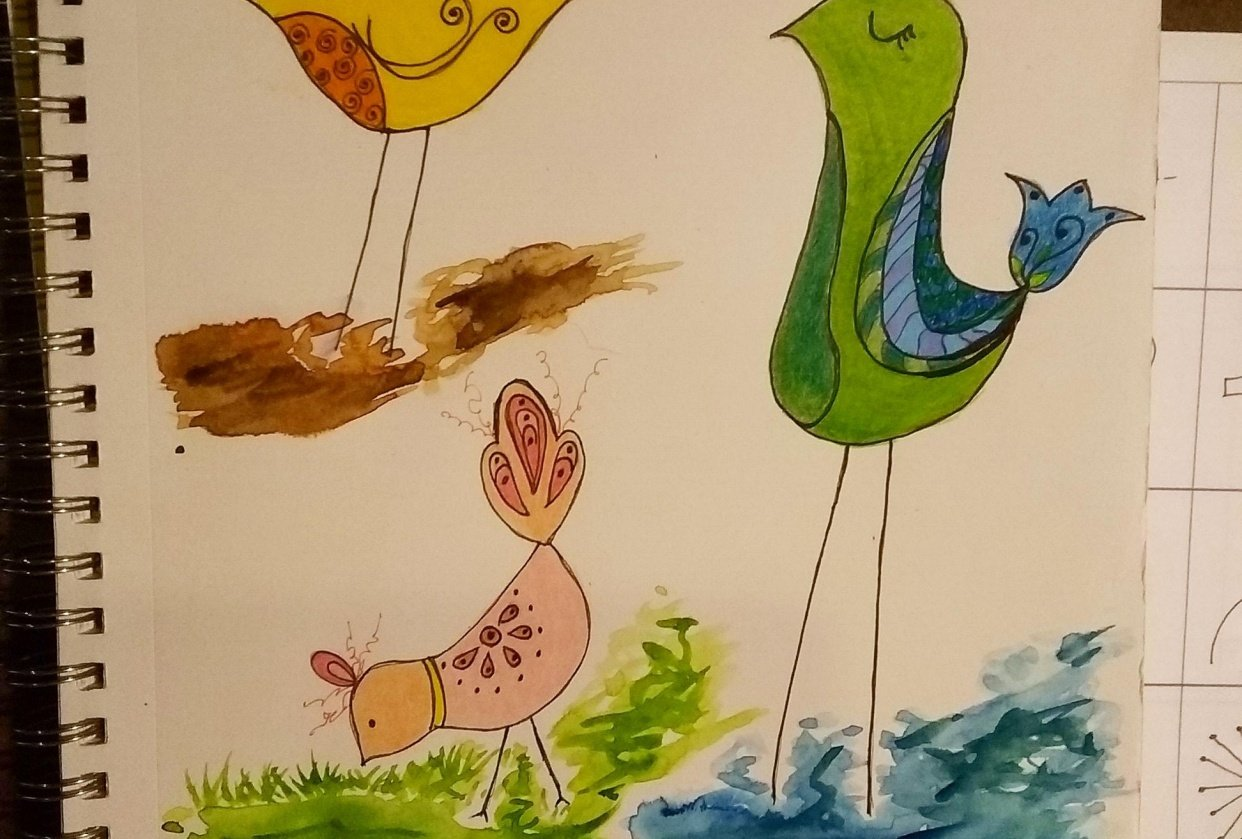 Terri's New Bird Family - student project
