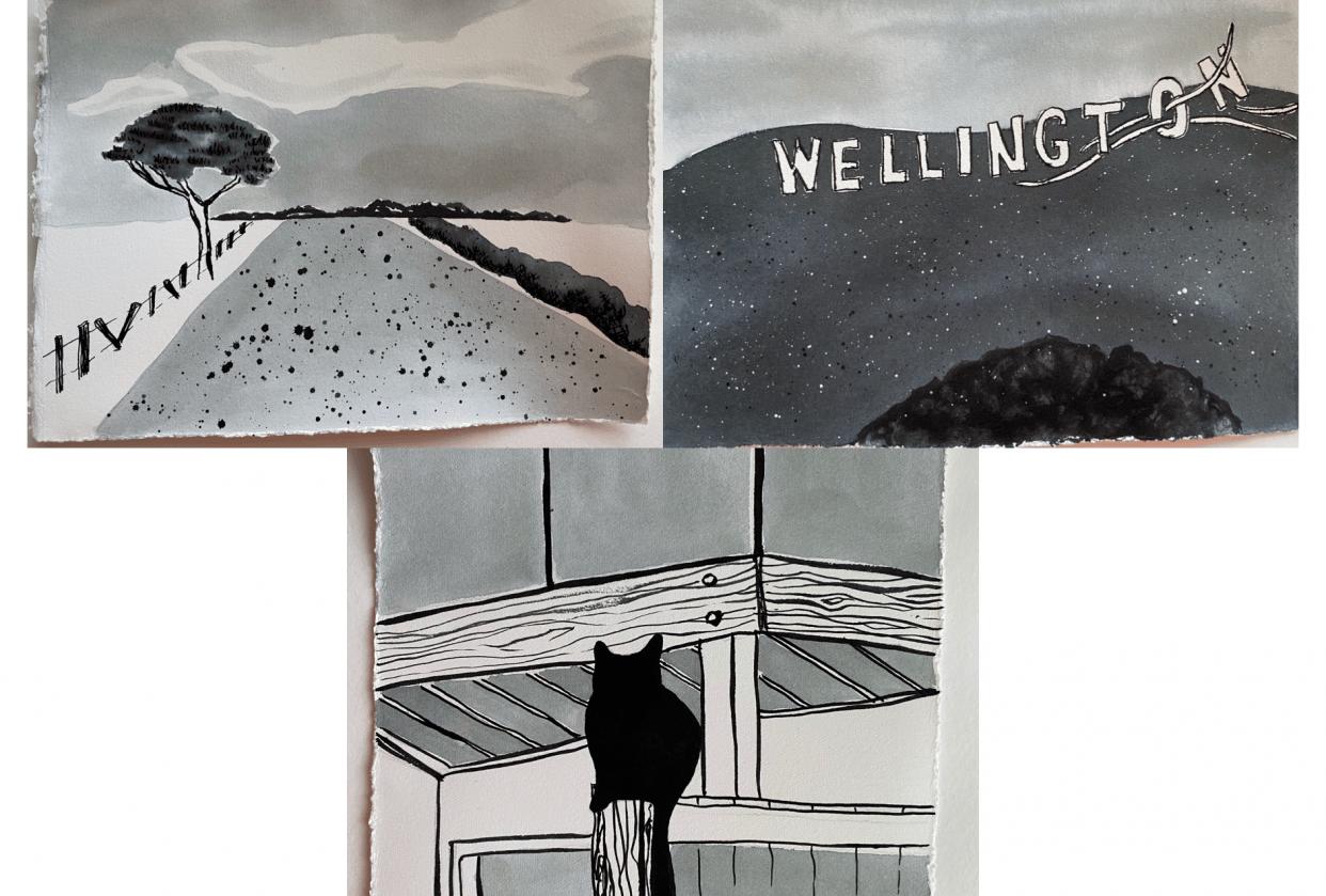Hamilton and Wellington, New Zealand - student project