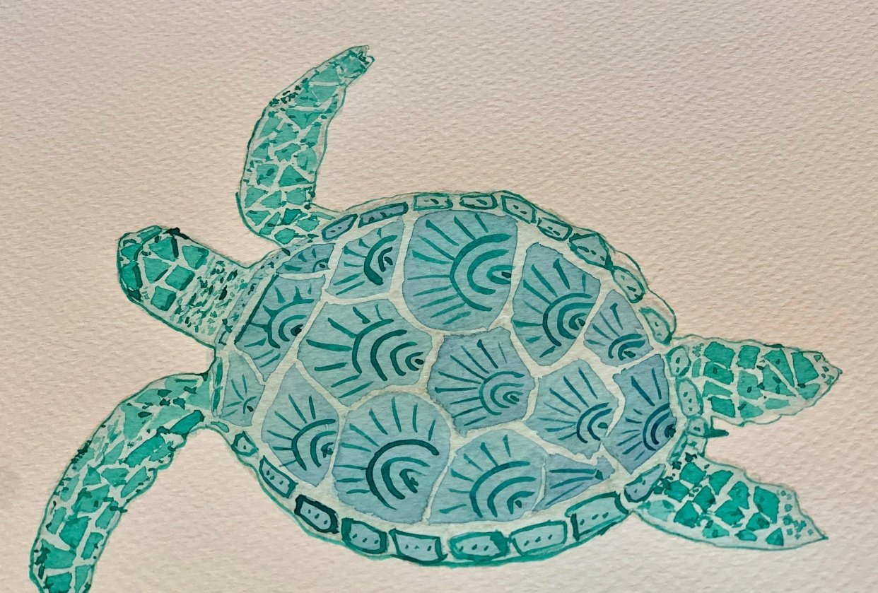 Joyful Sea Turtle! - student project